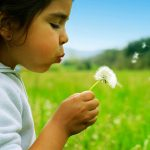 girl blowing on flower